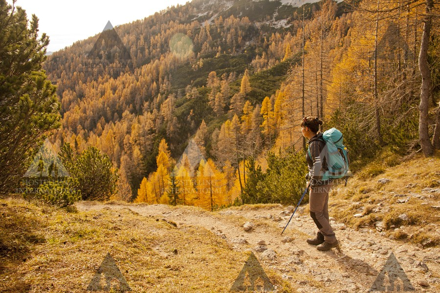 Pogled na Jesen, Petra Škrjanc