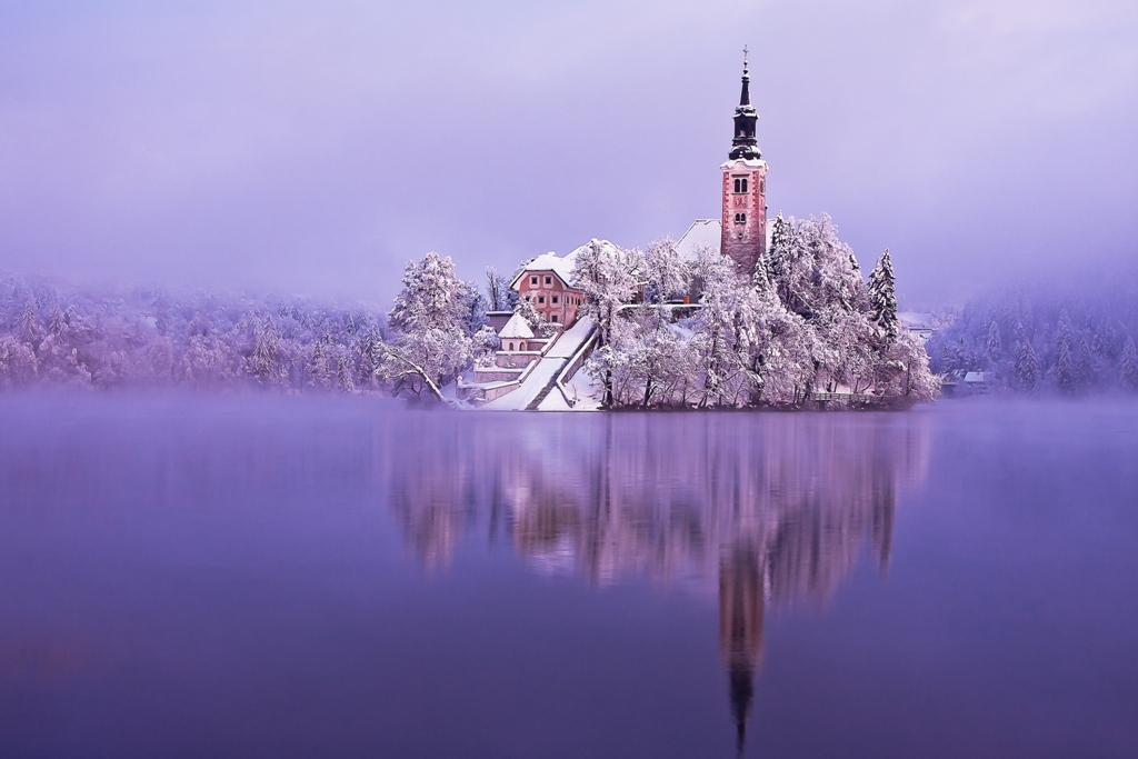 Bled_in_white_Author_-__Franci_Ferjan_1.jpg