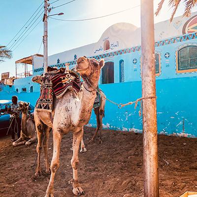 Potovanje v Egipt