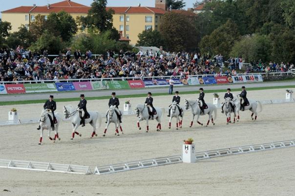43_Horses_03_Foto_Sibil_Slejko.JPG
