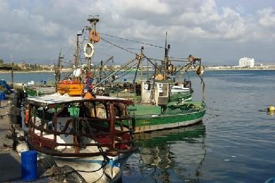A port of Akko